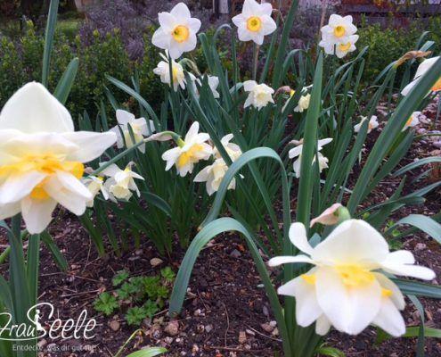 FrauSeele Gedanken zu Ostern