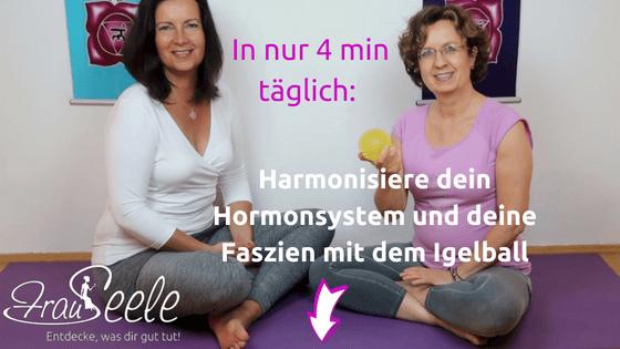 Harmonisiere dein Hormonsystem und deine Faszien mit dem Igelball